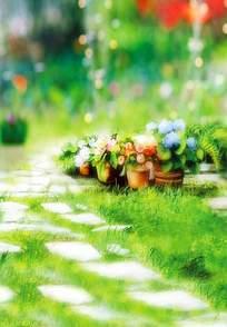 小径旁的盆栽