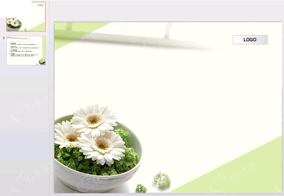 白色小花封面背景ppt