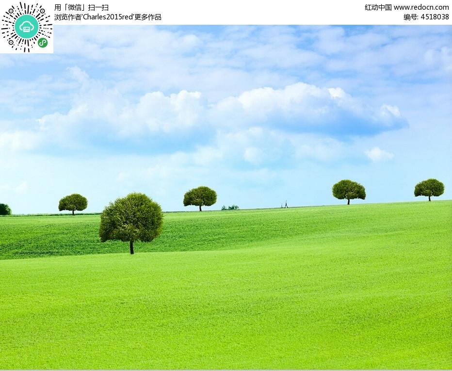 草原植物背景ppt图片