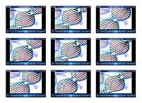 染色体细胞演示视频素材