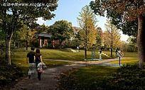 小区公园效果图