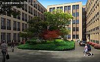 校园绿化带效果图