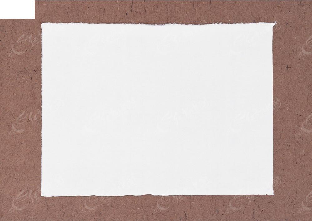 白纸画小动物六年级