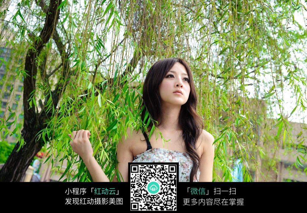 柳树下的端庄美女写真女人_安琦图片图片美女女性图片