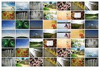 风景系列图片平铺