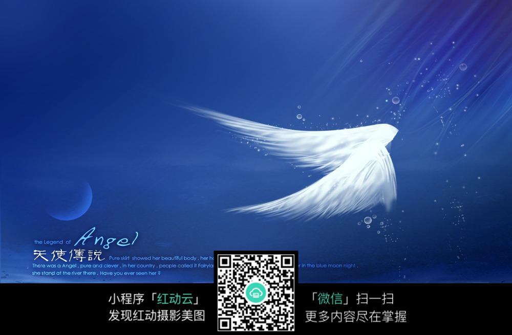 蓝色天使翅膀背景图