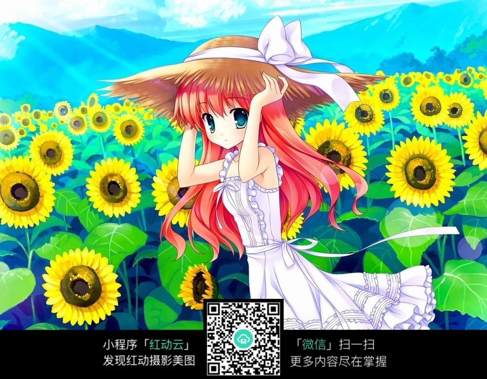 向日葵丛中的少女图片