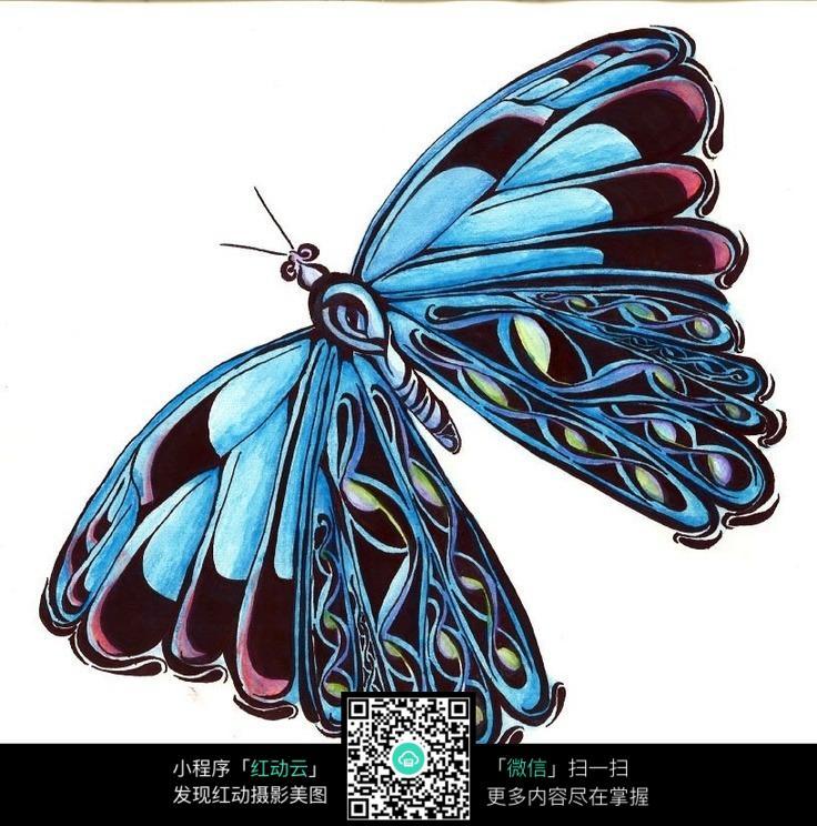 蝴蝶图案手绘素材