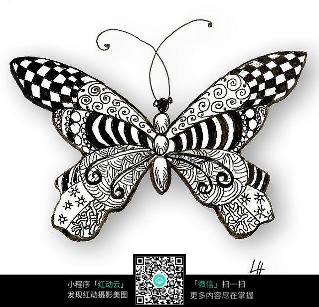 手绘蝴蝶花纹图片