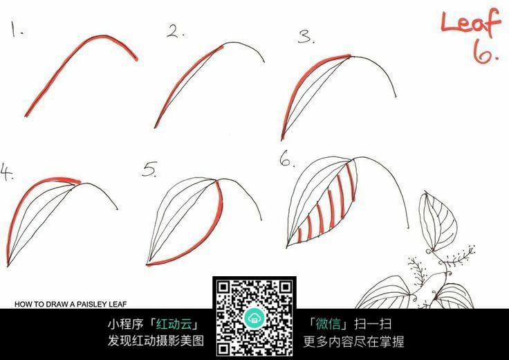 手绘树叶花纹步骤
