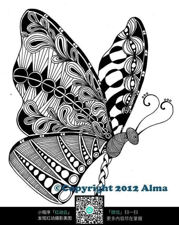 创意 大化蝶图片