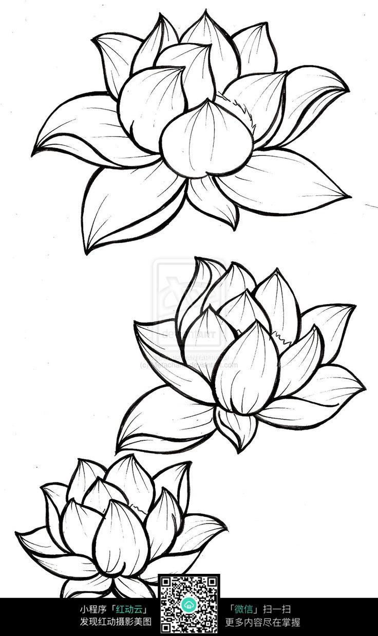 求十张简笔画花的图片 简单美丽