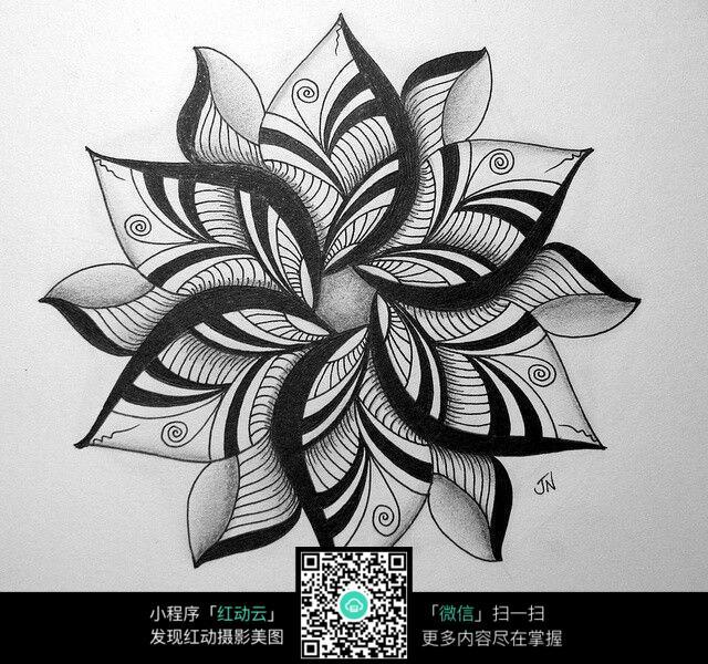 花纹花朵花瓣插图 手绘黑白花纹