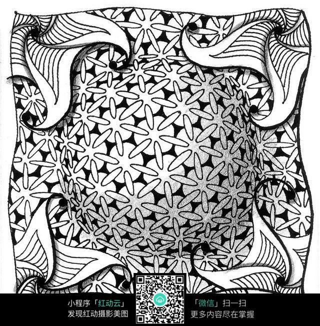 黑白立体花纹 手绘黑白花纹 彩色装饰画 复杂排线花纹插图 植物花卉