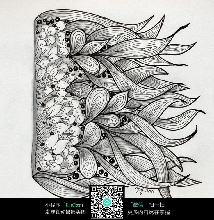 黑白手绘插画花