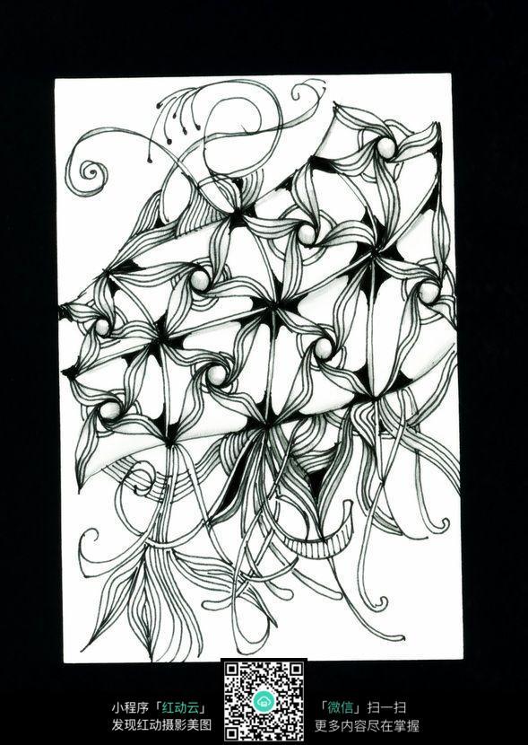 黑白植物插画设计