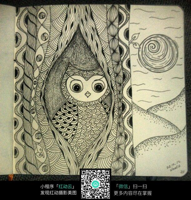 猫头鹰手绘设计图片