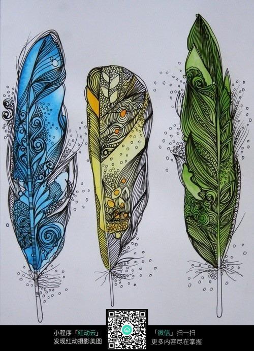 手绘彩色羽毛插画图片