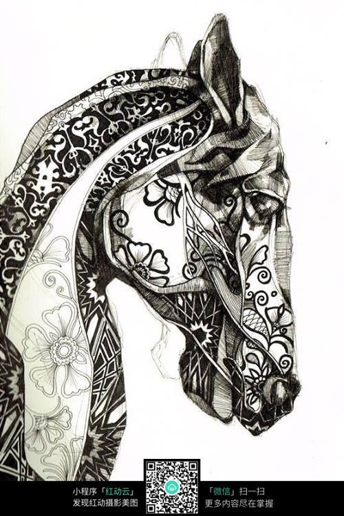 手绘插画动物马
