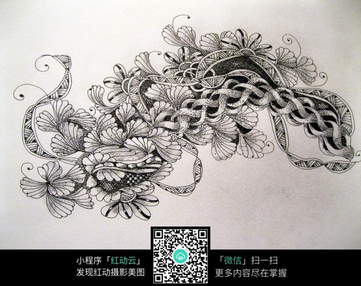 手绘黑白植物花卉图片