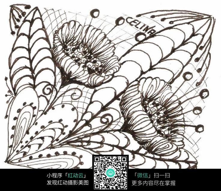 手绘花朵线稿图片