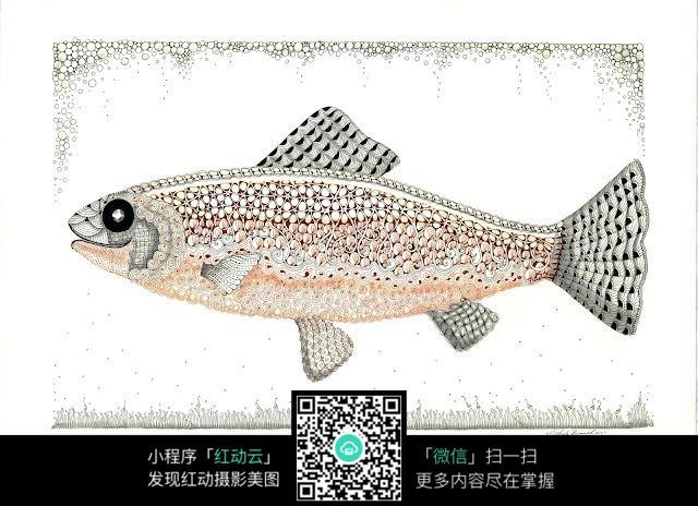 手绘鱼图片