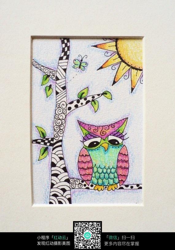 树上的猫头鹰手绘装饰画