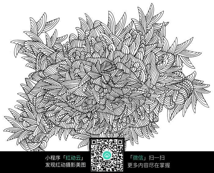 树叶黑白插图设计图片