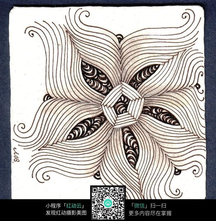 花朵 图案 手绘