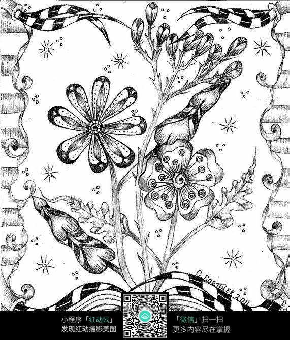 叶子黑白插图设计图片