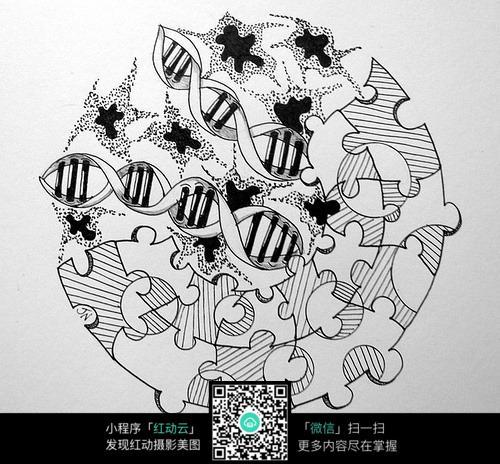 圆形拼图花纹 手绘黑白装饰画 复杂传统花纹插图 民族植物花卉插画图片