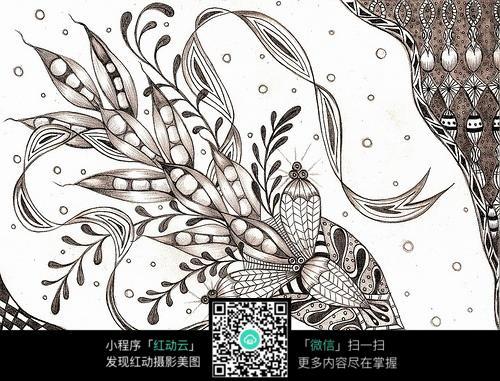植物果实花纹图片