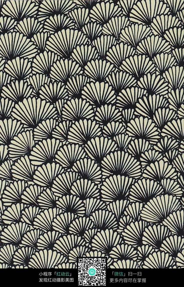 贝壳扇子花纹图片