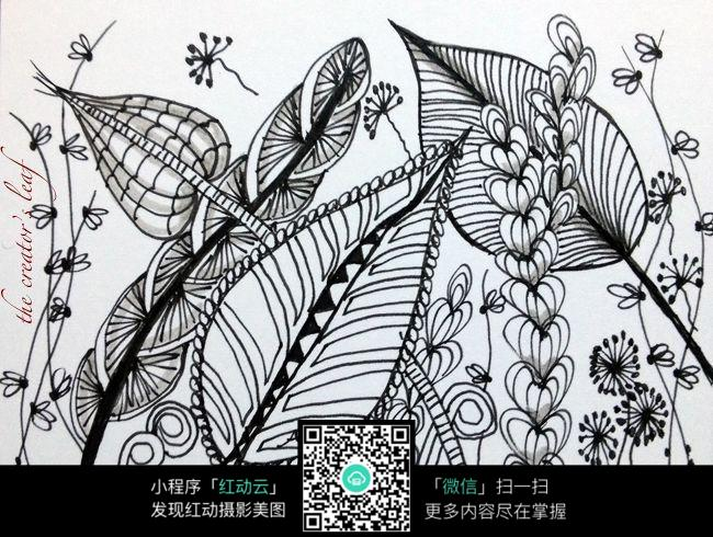 草丛中的花创意手绘插画