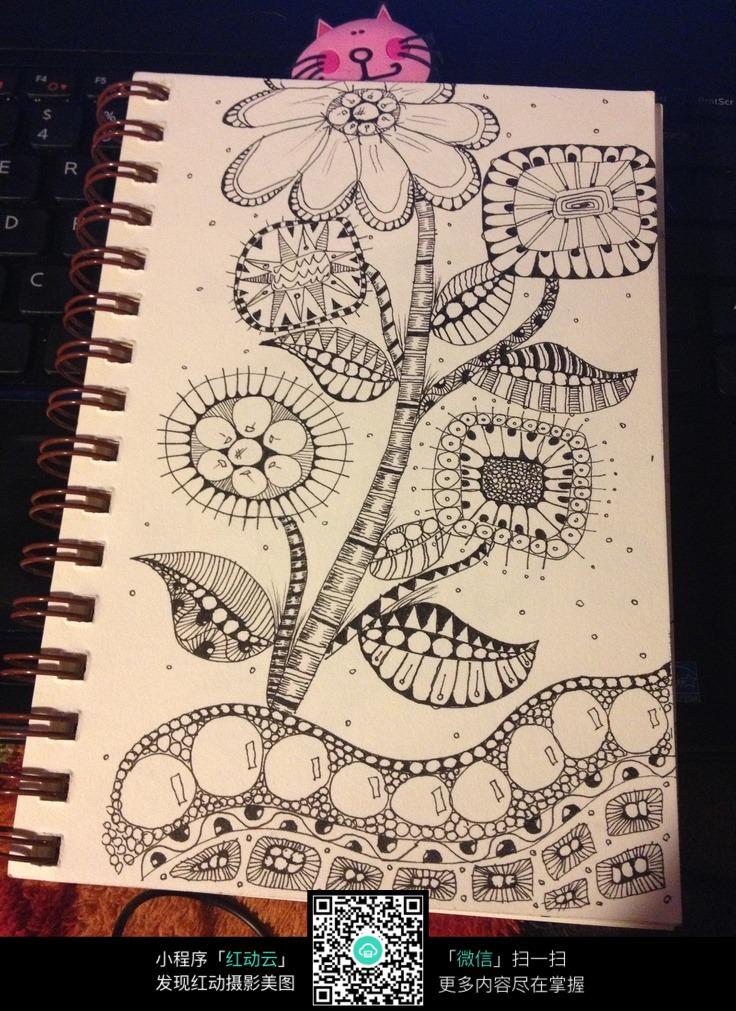 插画植物手绘插画纹理
