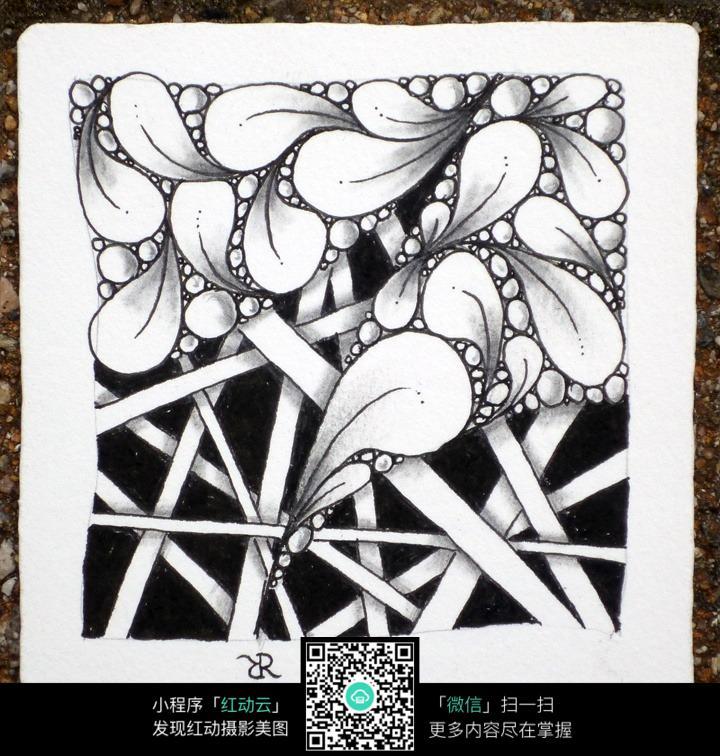 黑白花瓣手绘插画图片