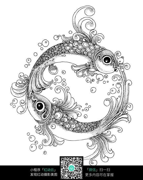 两只金鱼创意手绘插画图片