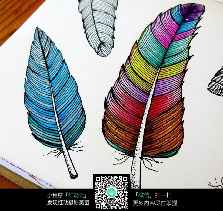 手绘彩色羽毛
