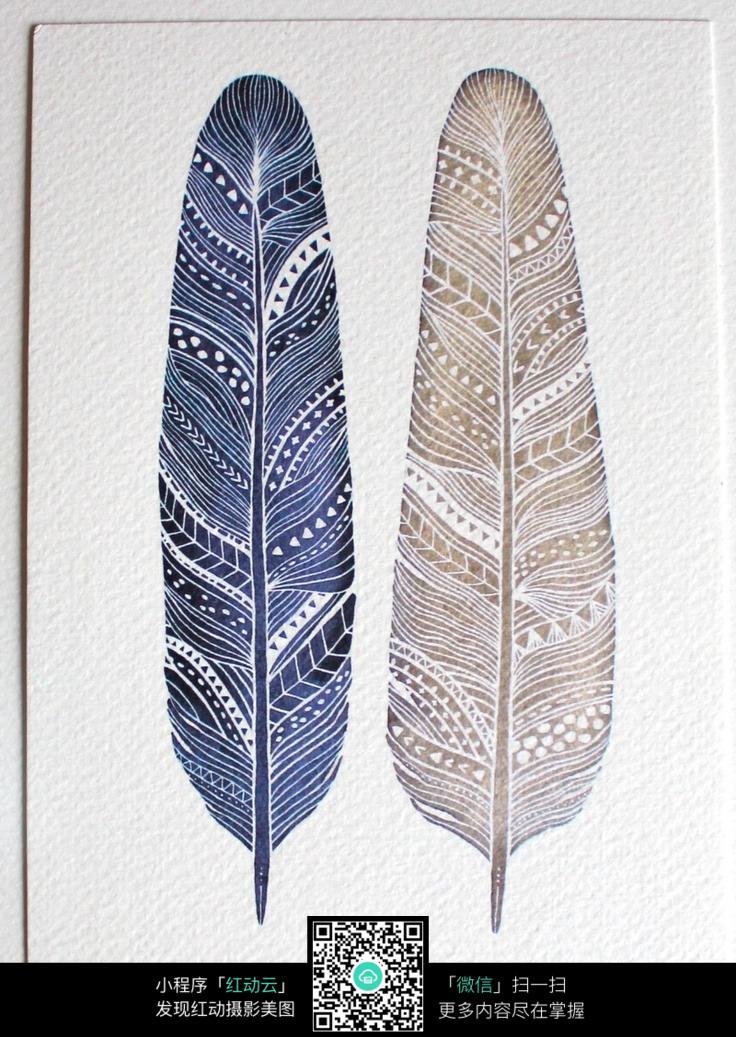 手绘彩色羽毛图片