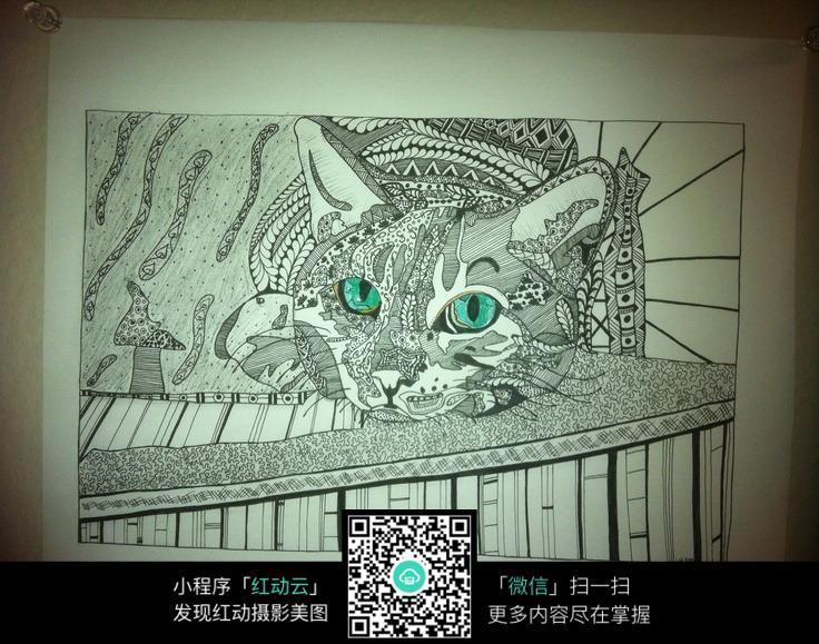 手绘黑白的猫图片