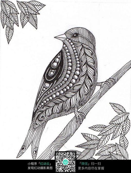 树枝上的啄木鸟手绘插画