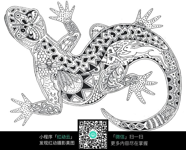 动物纹理 线条纹理 壁虎
