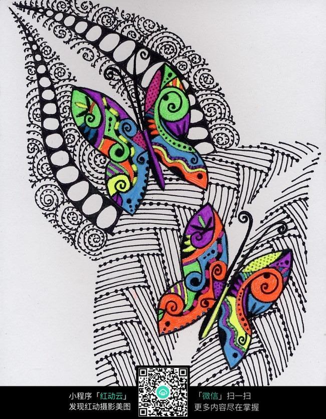 叶子上的蝴蝶创意手绘插画图片