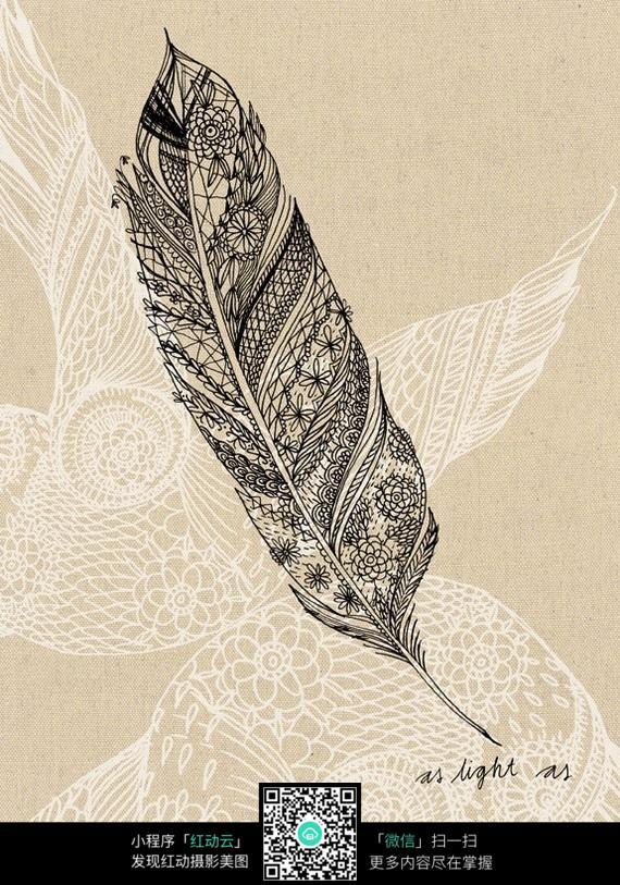 羽毛手绘插画图片