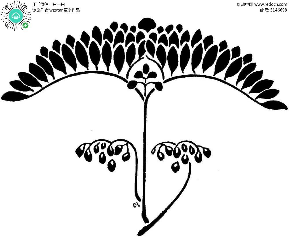 黑白手绘花卉图片