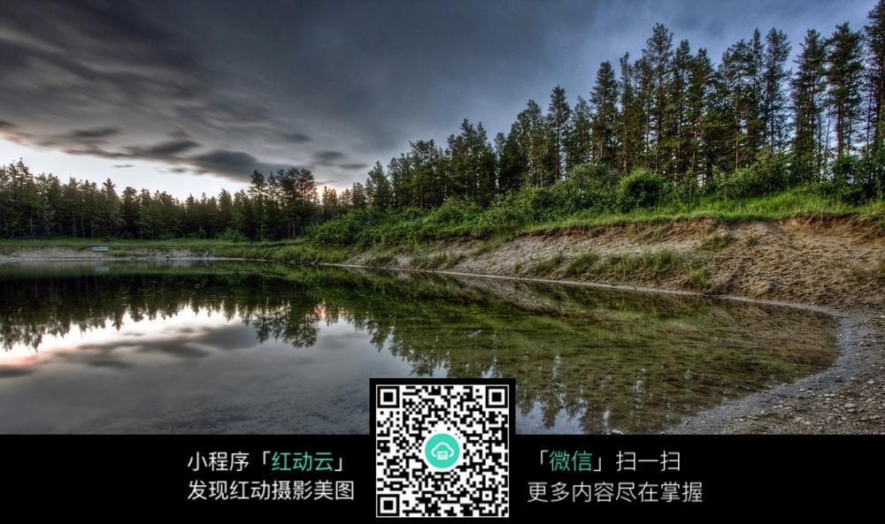 池边大树图片素材