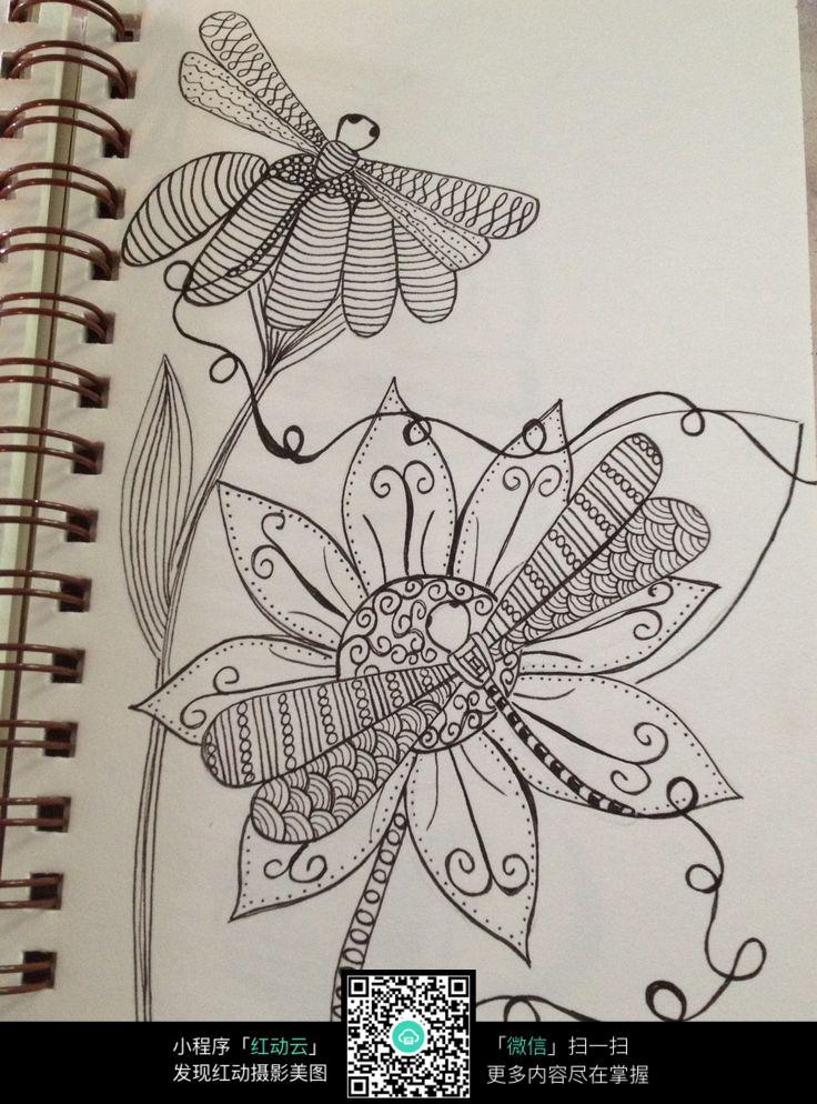 蜻蜓手绘图片大全