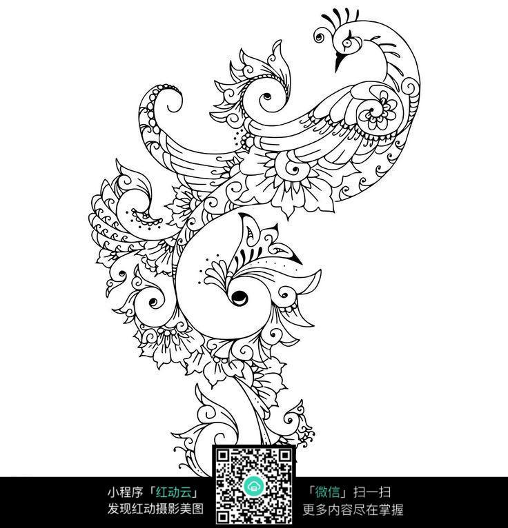 孔雀简笔画手绘图片