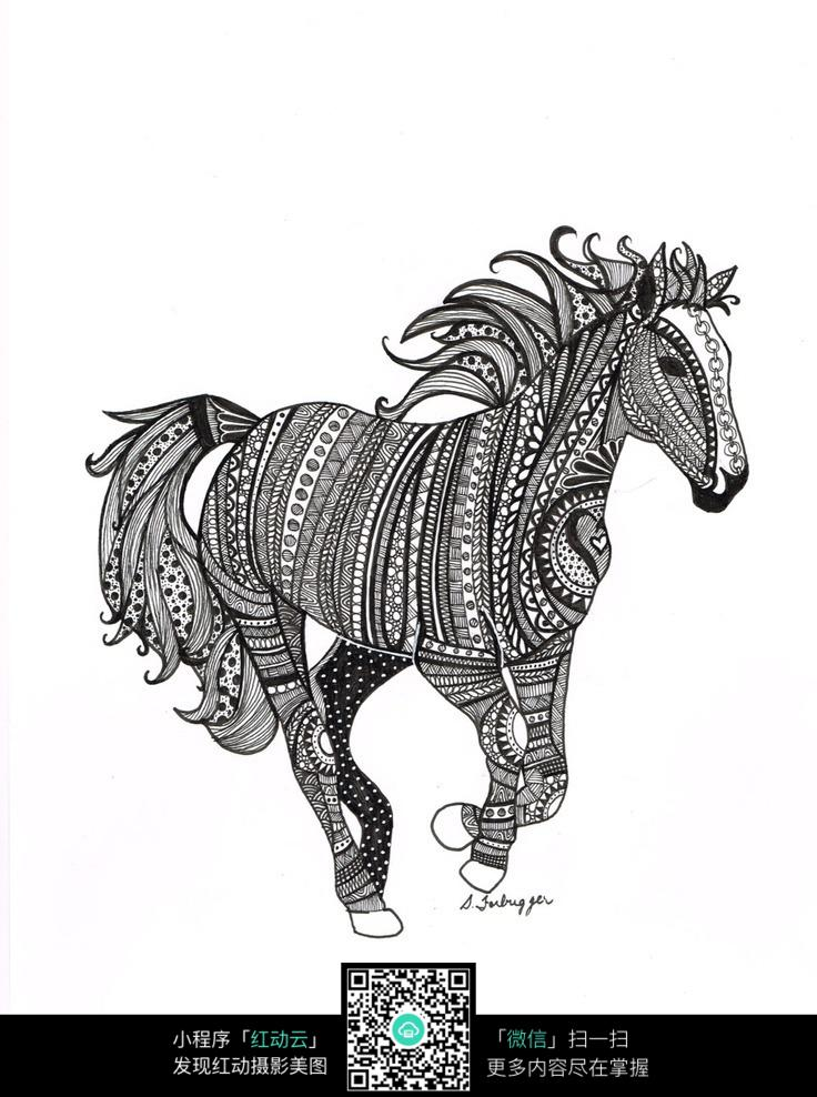 动物 马 手绘