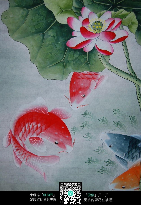 荷花下的红色鲤鱼工笔画图片免费下载 编号5171510 红动网